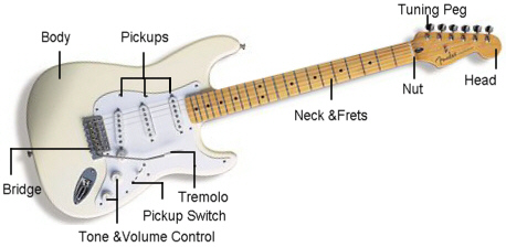 guitar_anatomy